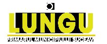 LOGO-Ion-Lungu